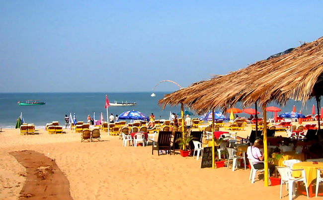 Looking for Reasons to Visit Goa ?