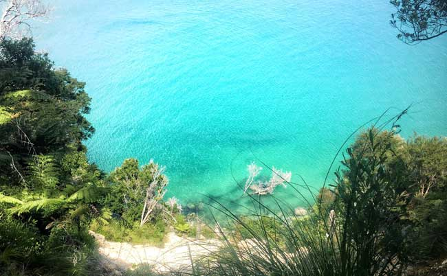 free-activities-new-zealand-abel-tasman-ocean