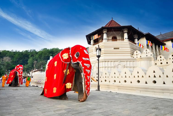 The Amazing Attractions Of Sri Lanka