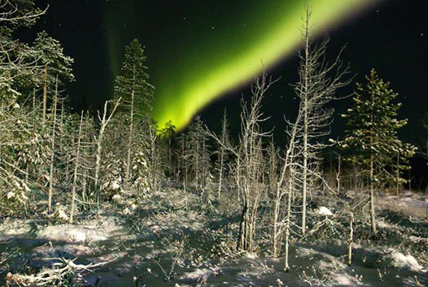 mobile-northern-lights-chase