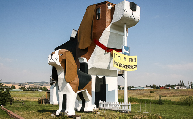 unusual-hotels-dog-bark-park-inn-usa